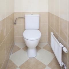 Каыель в туалете