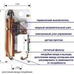 protochnei v n 5