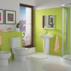 зелёная 2