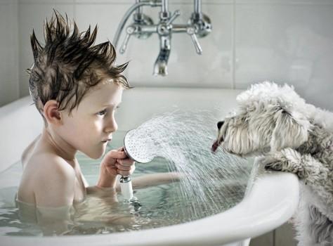 Правила выбора смесителей с душем для ванной: фото, видео установки и ремонта смесителей